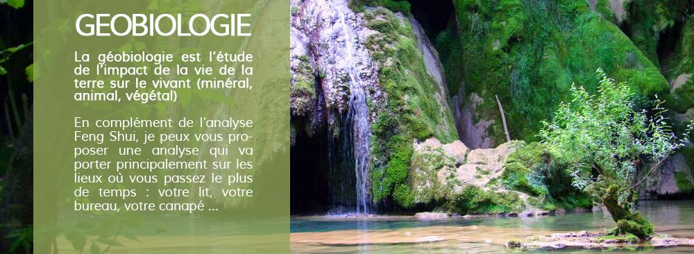 Geobiologie
